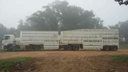 2014 Cattle Carrier