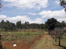 1/2acre Land prime land for sale in Rironi near tarmac