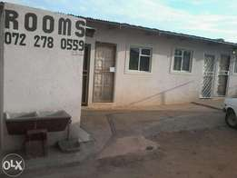 Rooms available immediaterly R800