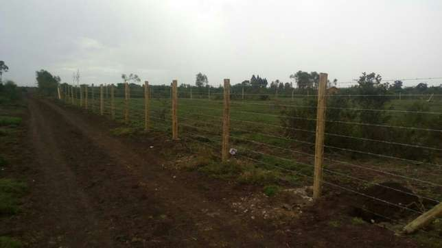Cute fencing Westlands - image 1