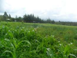 prime plots thika few meters from landless town