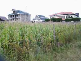 0.0471Ha or 50 x 100 vacant plot for sale in Royal estate