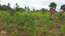 3.5acre farm on sale price is negotiable