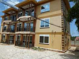 Brand new 2bedrooms 2bathrooms apartment in Bunga