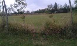 1 acres touching tamarc at ngata & sobea