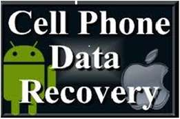 Cell phone data recovery services