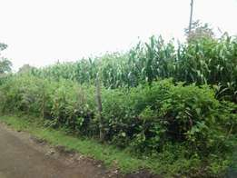 6 Acres for sale in Mang'u, Kabarak