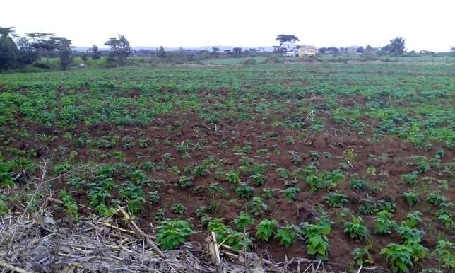 Land for sale in Bahati (6 acres ) Nakuru East - image 1