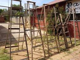 Variety of Large Wooden Ladders