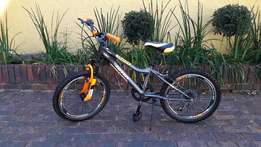 Totem Mountain Bike 20""
