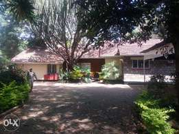 Beautiful 4bedrooms bungalow good for office, dsq, set on 0.5 acre.