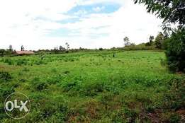 An 1/8 of an acre on sale in Limuru