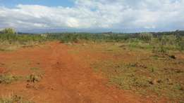 10 acres with river frontage in Timau, Ngenia at 600k per acre