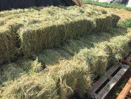 Cutting, raking and baling of hay