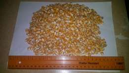 we supply yellow and white maize for animal feed and human consumption