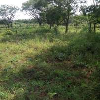 One acre of land or 8 plots of land at Ogele via Eiyekorin for sale