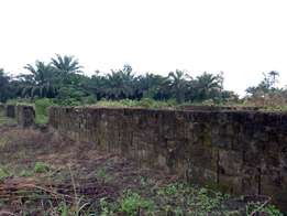 Land & Blocks For Sale in Ughelli , Delta State