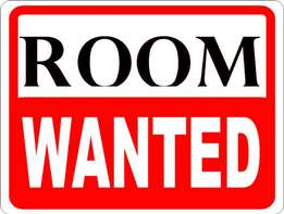 WANTED: Room to Rent in Polokwane