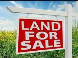 1 acre land for sale in westlands,church road.