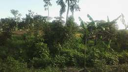 Beautiful 2acres of land on sale in namugongo-bukerere Each at 70m
