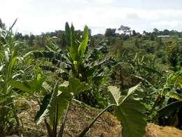 Land for sale in namugongo