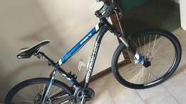 Silverback stride 10 bicycle for sale