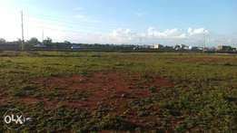 Timau 4 acres on sale with semi permanent house.