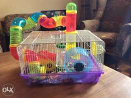Hamster cage plus hamster