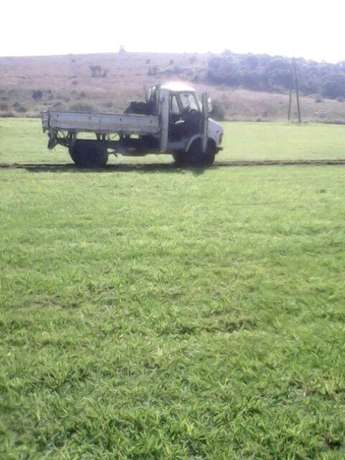 Need More Fresh Grass For Your Lawn? Johannesburg - image 4
