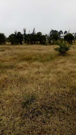 1/8 plots for sale Naromoru - image 7
