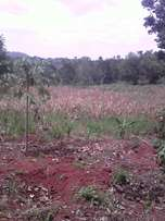 85 acres at Myanzi Mitya 5 km from tarmac