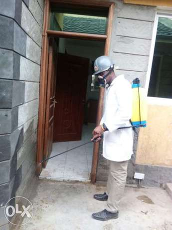 fumigation and pest control services Ruaka - image 1