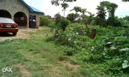 A plot of land at pagun area olodo