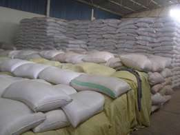 Maize available
