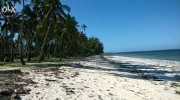 9.5 Acres beach plot in Kikambala Divisible by 2 acres, 30M Per Acre