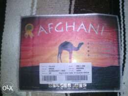 Original Afghani Carpet for sale