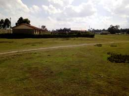 100x100 (¼acre) at 1.3 million
