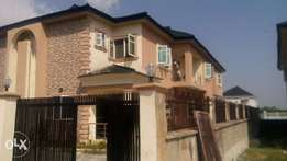 House Painter Professional