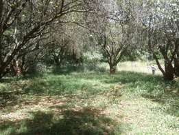 Lower kabete 8.5acres for sale