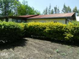 Four bedroom to let Syokimau