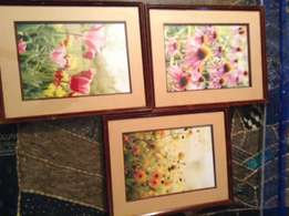 Ikea Flower Pictures Set