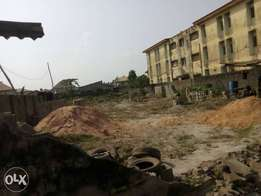 2 Plot of land together off OLANIYI street new OKO OBA Agege Lagos