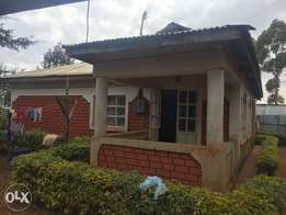 Three bedroomed house on 1/4 acre in malel estate