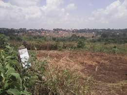 50 by 100 in mukono zone titled
