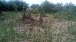 750sqm of land inside Greenland Estate by Lagos Business School, Ajah.