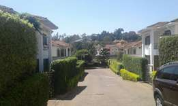house for rent in Lavington