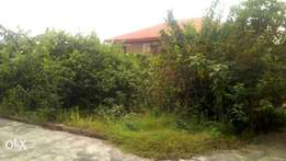 1/2 a plot at Iju road