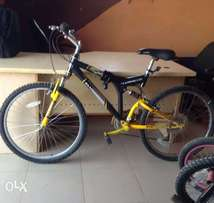 Clean American mountain bike, Adult bicycle,sport bicycle