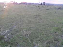 One eighth (1/8) of an acre land plots in Ongata Rongai