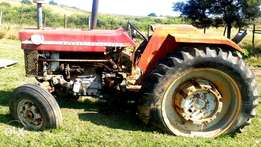 Massey ferguson 178 tractor for sale in Bizana eastern cape